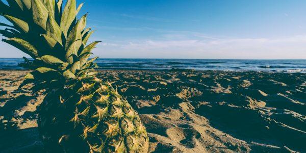 beach-1850966_1920
